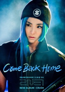 "Dara's promotional poster for 2NE1's latest album, ""Crush,"" and the album's single, ""Come Back Home"""