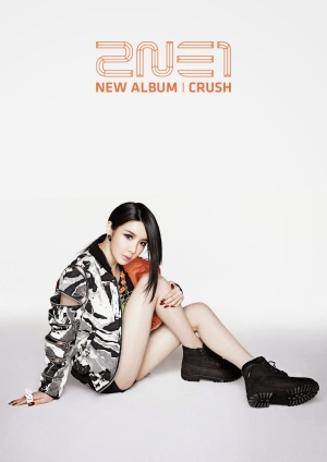 "Bom's promotional poster for 2NE1's latest album, ""Crush,"" and the album's single, ""Come Back Home"""